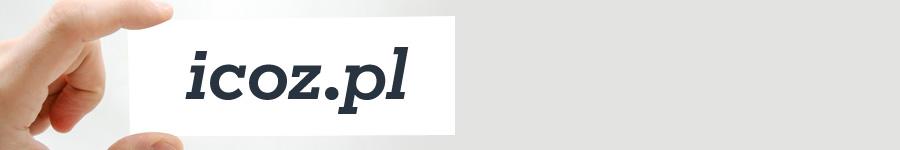 Budżet i rozliczenia - http://icoz.pl/